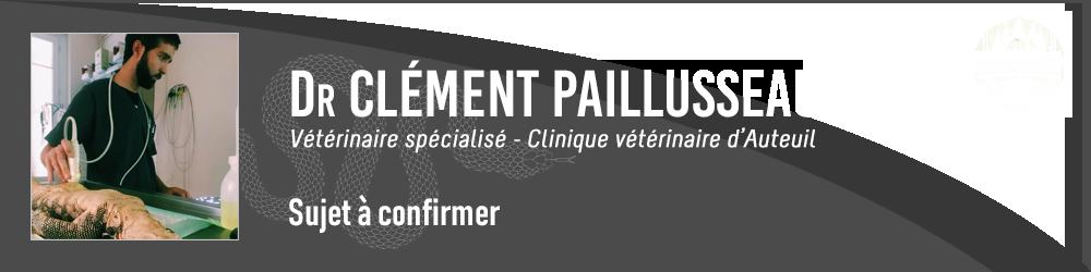 Clément Paillusseau