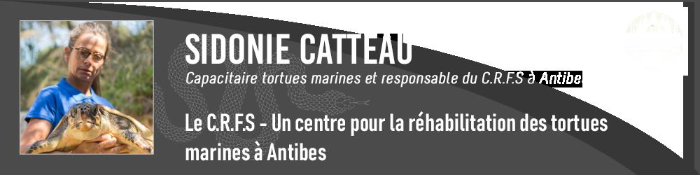 Sidonie Catteau